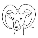 kit punch needle mouflon animaux de la montagne